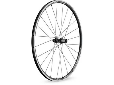 DT Swiss R24 Spline Rear Wheel